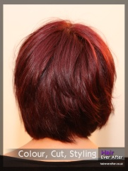 Hair Colour by Hair Ever After_0053