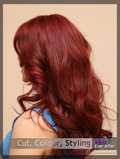 Hair Colour by Hair Ever After 0031